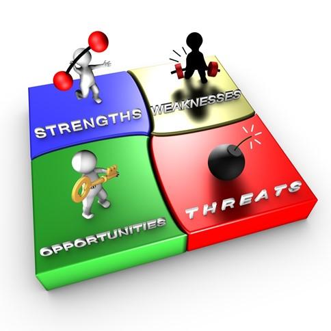 coaching analiza